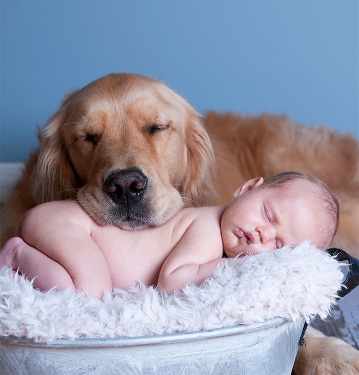 Cutest Babies Images With Puppy Dogs